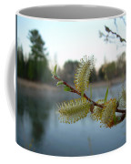 Pussy Willow Flowers Coffee Mug