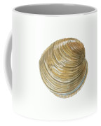 Quahog Shell Coffee Mug