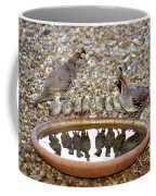 Quail Family Gathering Az Coffee Mug