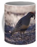 Quail Too Coffee Mug