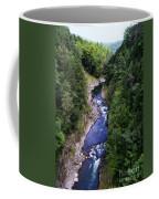 Quechee Gorge In Vermont Coffee Mug