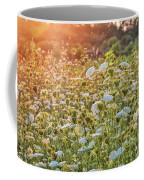Queen Anne At Sunset Coffee Mug