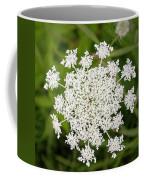 Queen Anne's Lace No 2 Coffee Mug