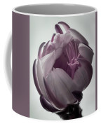 Queen Of The Night In Bloom Coffee Mug