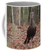 Questioning Wild Turkey Coffee Mug