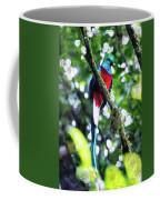 Quetzal In Monteverde Coffee Mug