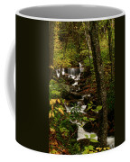 Quiet Autumn Stream Coffee Mug