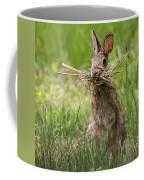 Rabbit Collector Square Coffee Mug