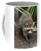 Raccoon Bandit Coffee Mug