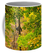 Racoon In Fall Trees Coffee Mug