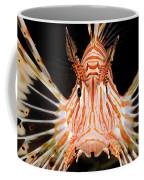 radial Lionfish Pterois radiata Coffee Mug