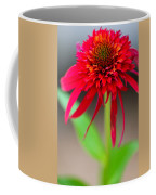Radient Red Coffee Mug