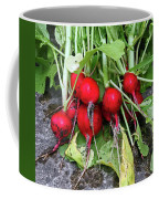 Radish Harvest Coffee Mug