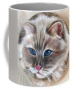 Rag Doll Siamese Coffee Mug