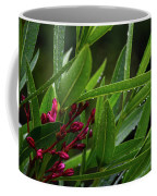 Rain Coated Blades Of Grass And  Deep Pink Petals Coffee Mug