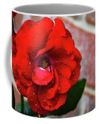 Rain Covered Red Rose Coffee Mug