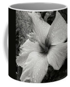 Rain-drenched Coffee Mug