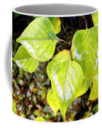 Rain On The Fall Lilac Coffee Mug