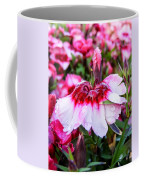 Rain Soaked Dianthus Coffee Mug