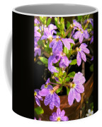Rain Soaked Fan Flowers Coffee Mug