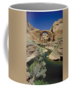 Rainbow Bridge Upstream Coffee Mug by Jerry McElroy