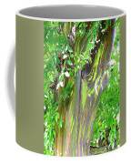 Rainbow Eucalyptus Coffee Mug