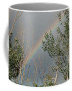 Rainbow In The Trees Coffee Mug