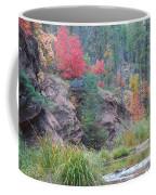 Rainbow Of The Season With River Coffee Mug