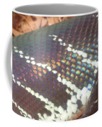 Rainbow Scales Coffee Mug