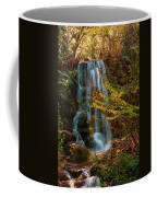 Rainbow Springs Waterfall Coffee Mug