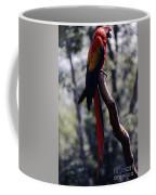 Rainbowparrot Coffee Mug