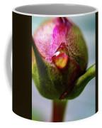 Raindrop On Peonie Coffee Mug