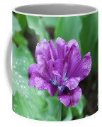 Raindrops Clinging To The Purple Petals Of A Tulip Coffee Mug