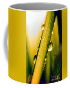 Raindrops On A Blade Of Grass Coffee Mug