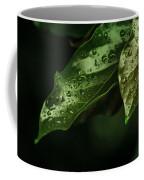 Raindrops On Avocado Leafs Coffee Mug