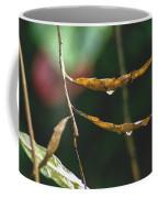Raindrops On Leaf 3 Coffee Mug