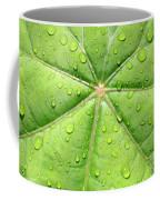 Raindrops On Leaf Coffee Mug