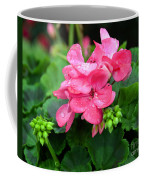Raindrops On Pink Geranium Coffee Mug