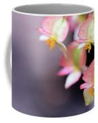 Raindrops On Rare Begoinia Blooms In Macro Coffee Mug