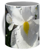 Raindrops On White Irises Flowers Sunlit Baslee Troutman Coffee Mug