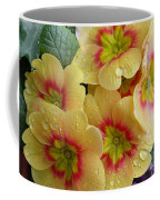 Raindrops On Yellow Flowers Coffee Mug