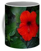 Rainforest Beauty Coffee Mug