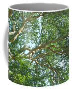 Rainforest Canopy Coffee Mug