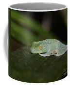 Rainforest Detail.. Coffee Mug
