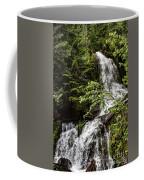 Rainforest Falls Coffee Mug