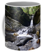 Rainforest Stream Coffee Mug