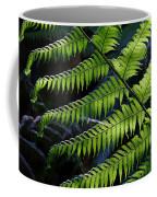 Rainforest Wonder Coffee Mug