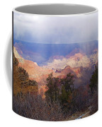 Raining In The Canyon Coffee Mug