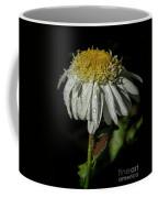 Rainy Daisy Coffee Mug