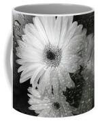 Rainy Day Daisies Coffee Mug